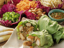 Asian Wraps RE Quick and Easy Chicken Recipes